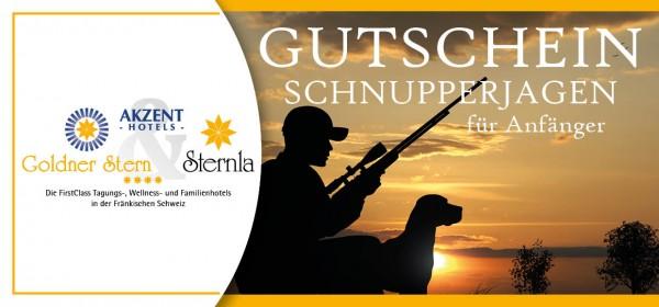 Akzent Hotels - Goldner Stern & Sternla (Gutscheine)